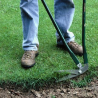Lawn Care East Finchley