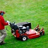Lawn Mowing East Finchley