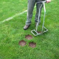Lawn Repair East Finchley