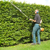 Garden Maintenance East Finchley