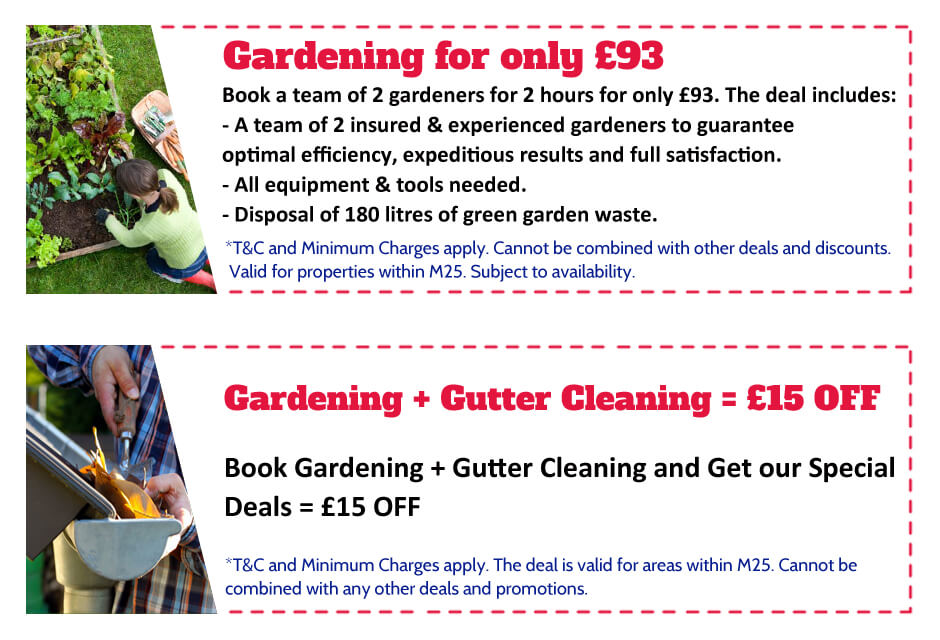 Gardeners East Finchley Offer